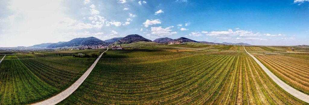 panorama-eschbach